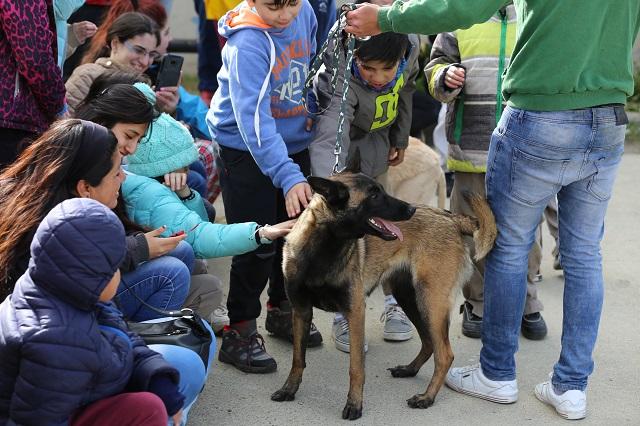 Actividades para toda la familia en la tercera jornada de adopción de mascotas