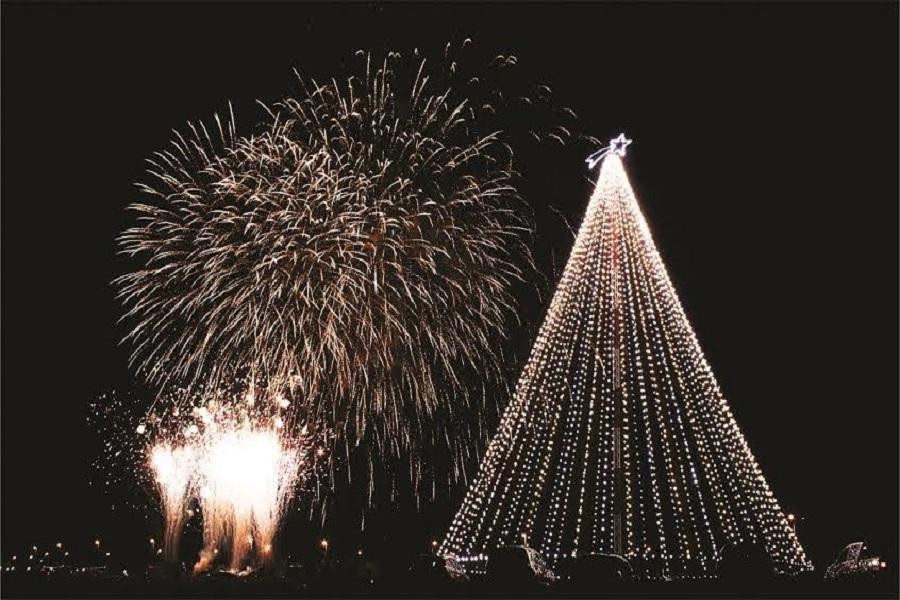 El tradicional encendido del Árbol de navidad será este jueves 7 de diciembre