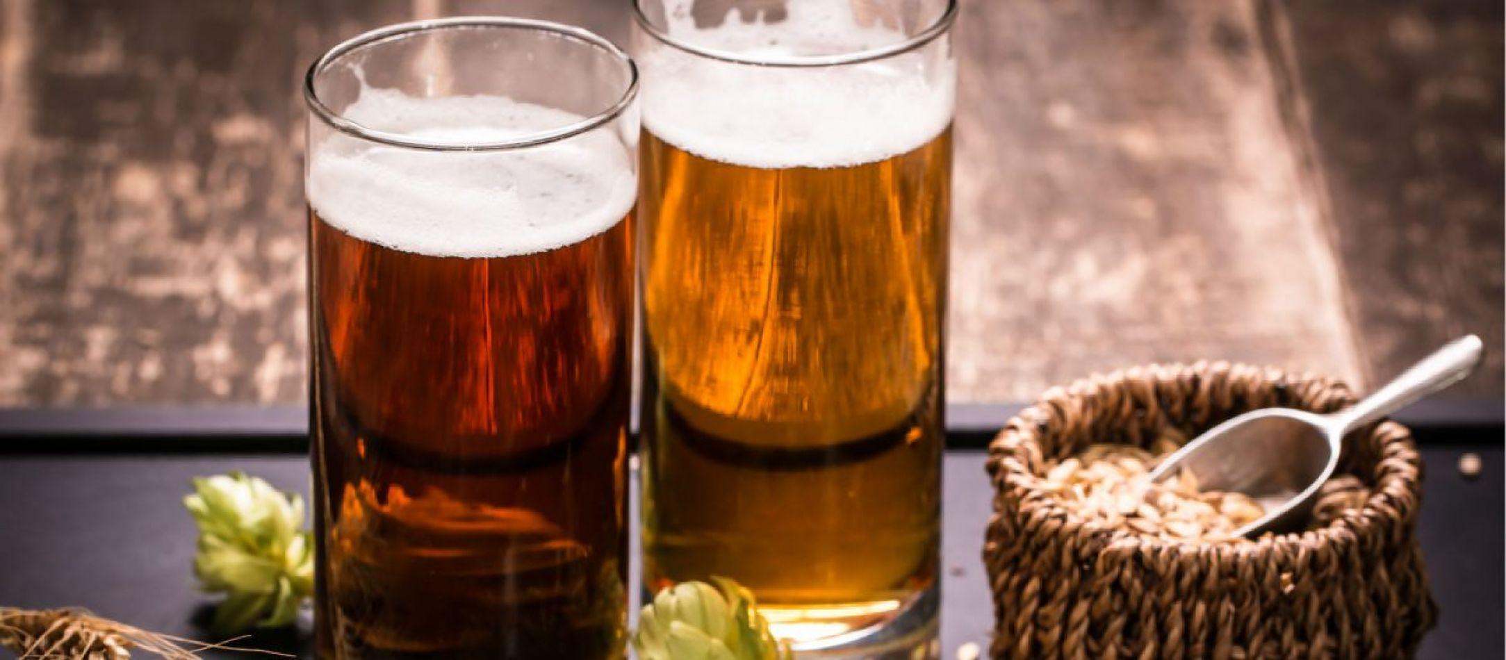 Productores de cerveza artesanal y científicos se reunieron en Esquel