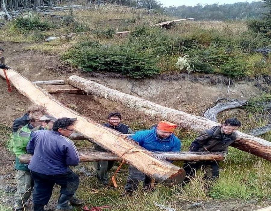 """Reserva Corazón de la Isla: Trabajos en la senda """"Huellas del Fín del Mundo"""""""