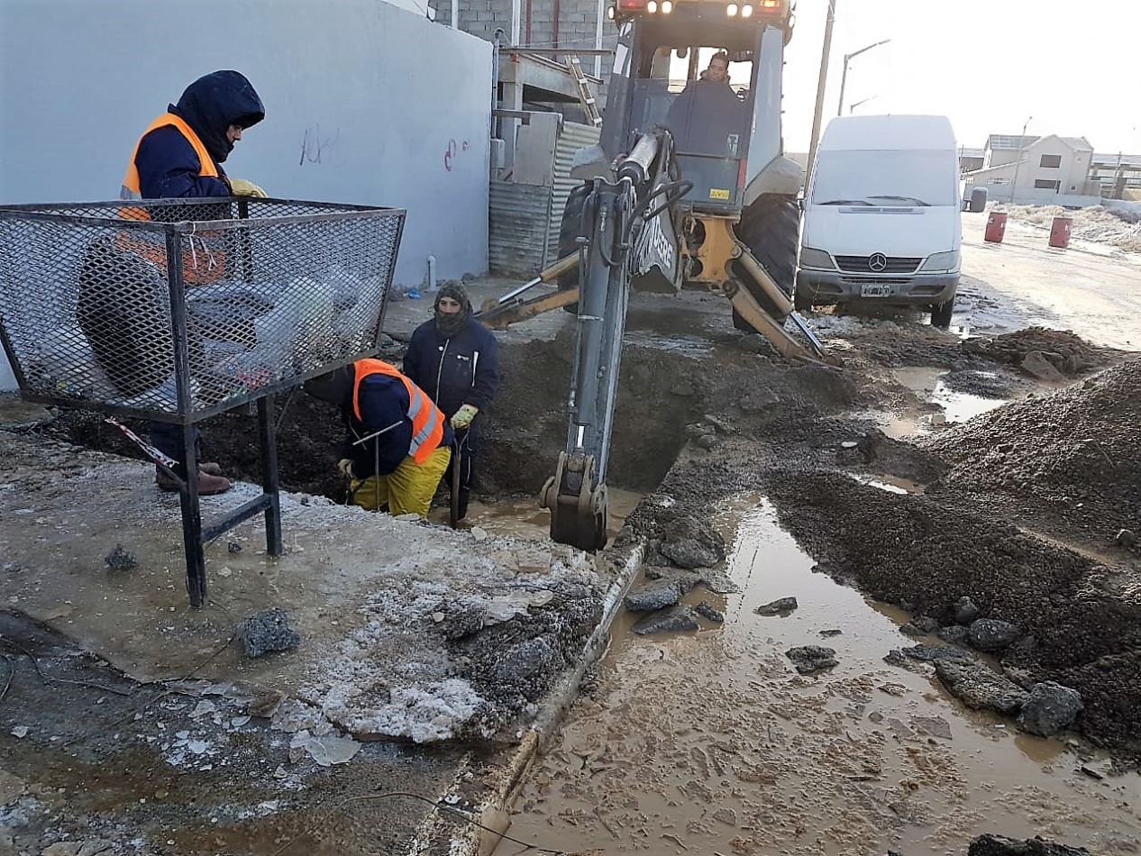 La labor se llevó adelante con agua helada y bajo 3 metros de profundidad.