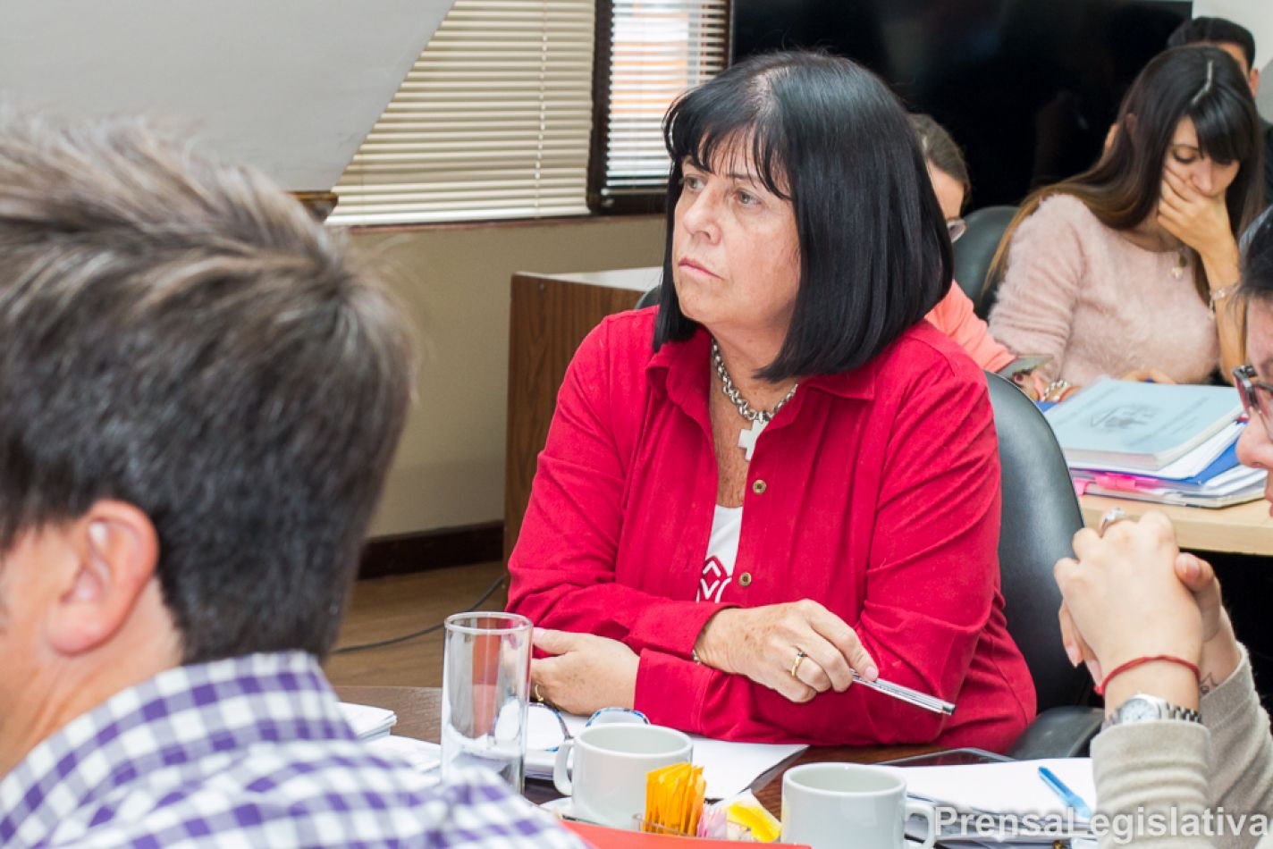 Legisladora Liliana Martínez Allende