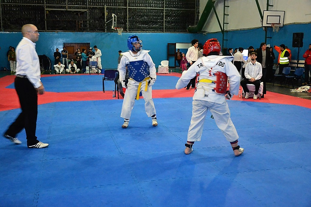 Taekwondo: Se llevó adelante la apertura de la 'Copa Corazón de la Isla'