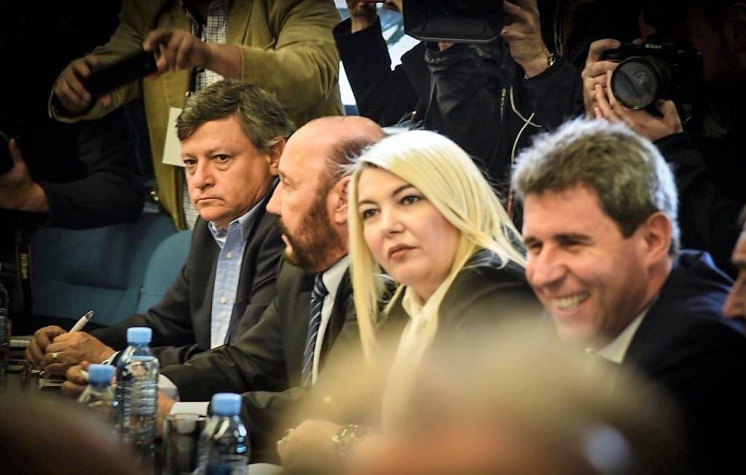 Bertone participó del encuentro con los gobernadores