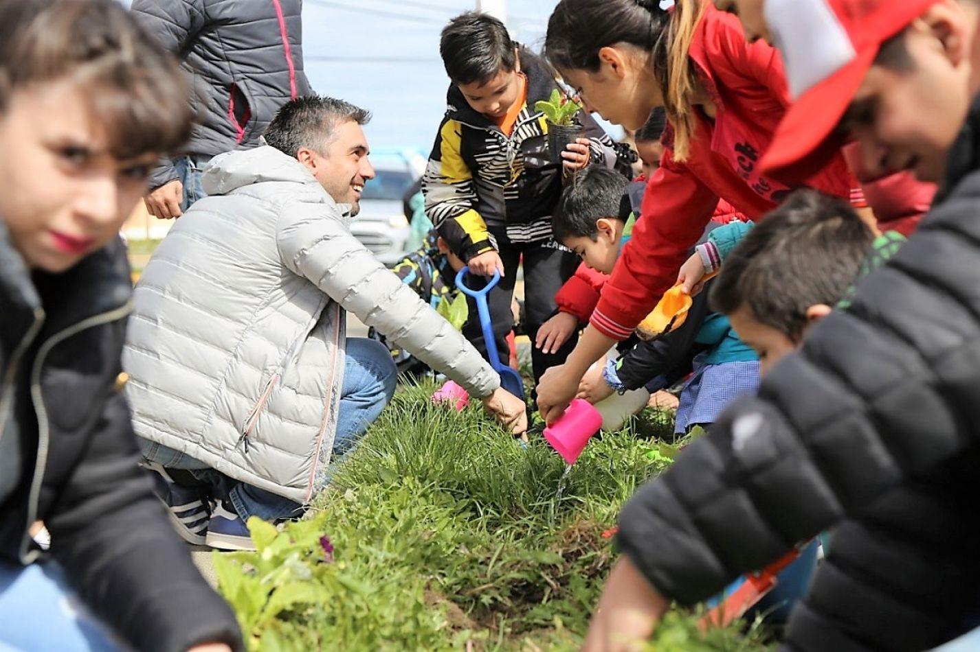 Campaña intensiva para forestar Río Grande y reducir impuestos
