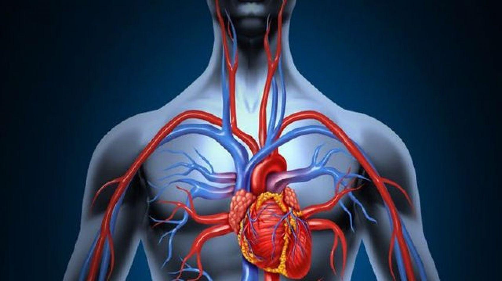 Éxito en salud: implantaron el primer stent bioabsorbible en el país