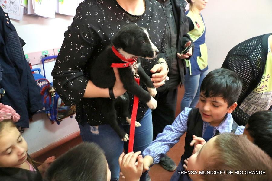 El municipio concientiza sobre la adopción responsable de mascotas