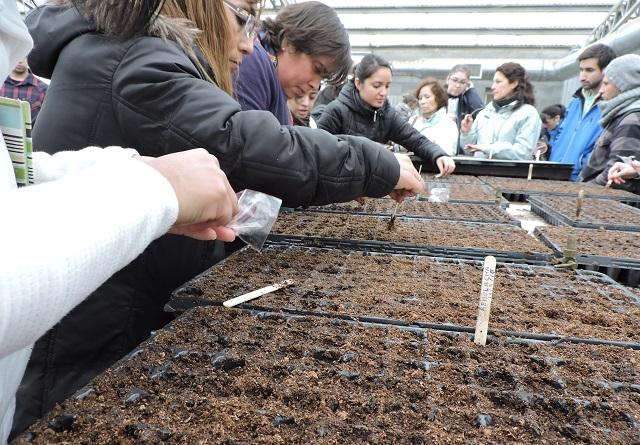Con la distribución de semillas comienza la temporada de huertas