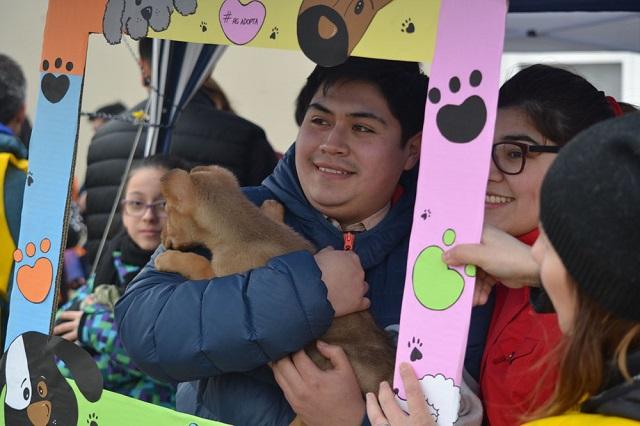 Con excelente respuesta, se realizó una nueva jornada de adopción de mascotas