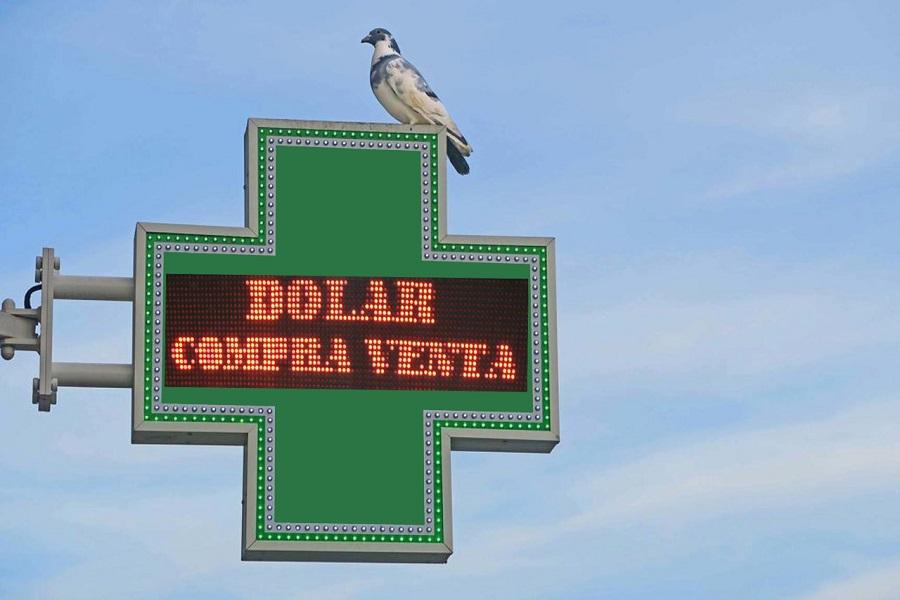 El Banco Central autorizó a comercios de todos los rubros para la venta de dólares