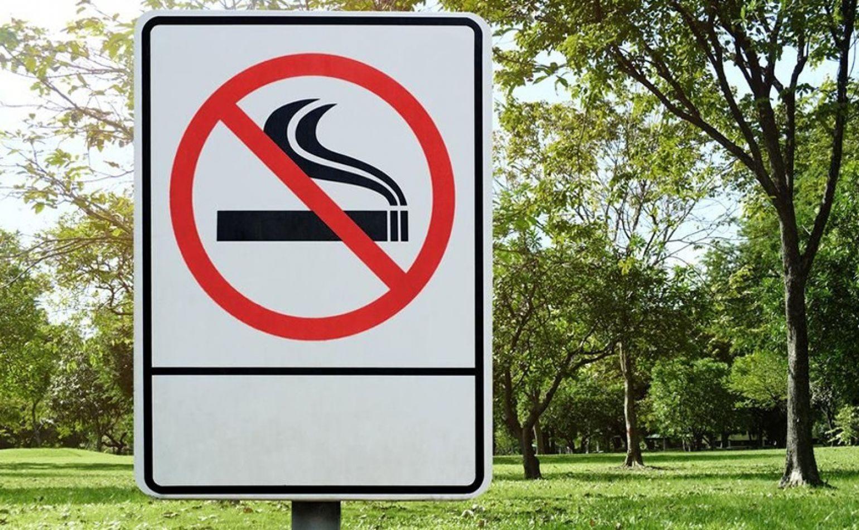 El tabaco mata cada año a más de 7 millones de personas en el mundo