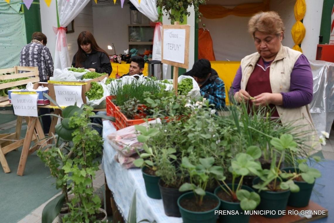 Huertas Urbanas: Este sábado 17 se realizará una feria de productos locales