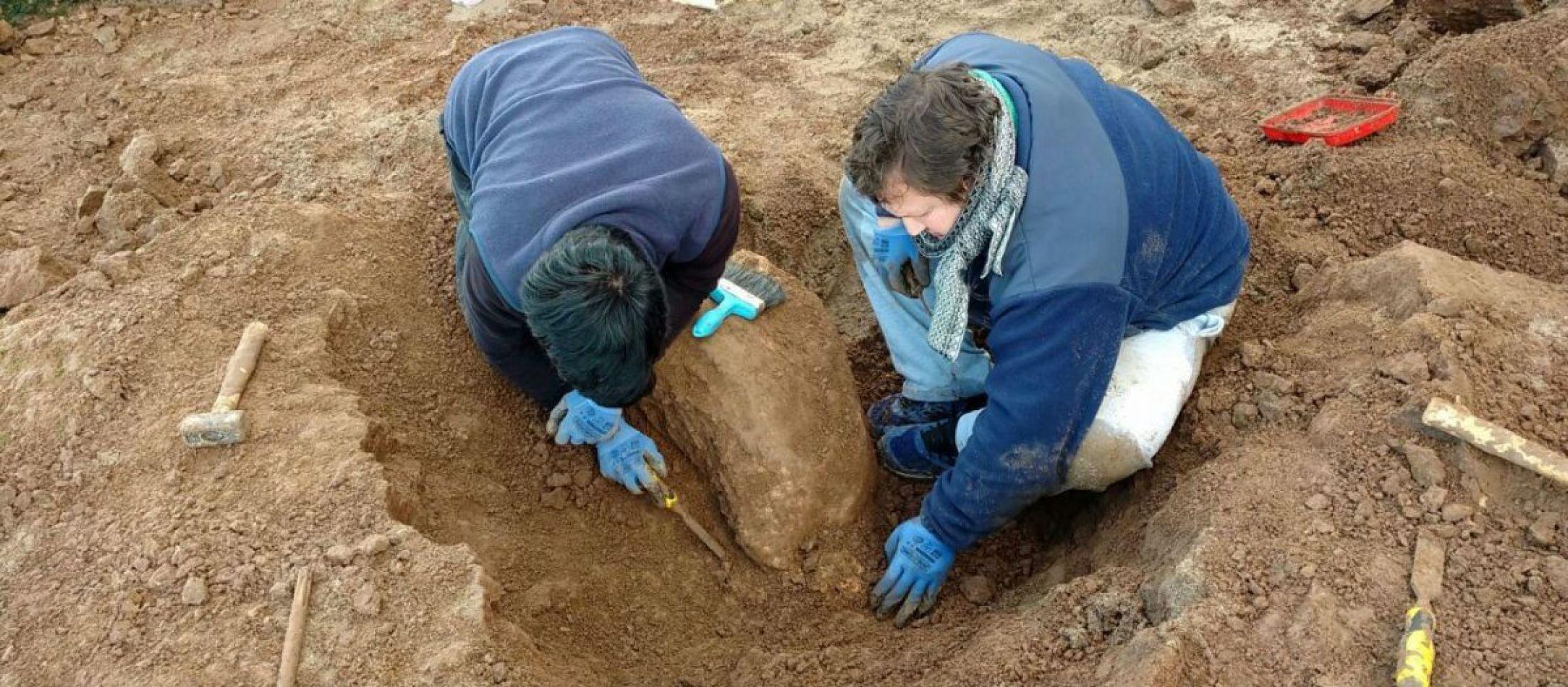Hallan restos de un carpincho que habitó Miramar hace cien mil años