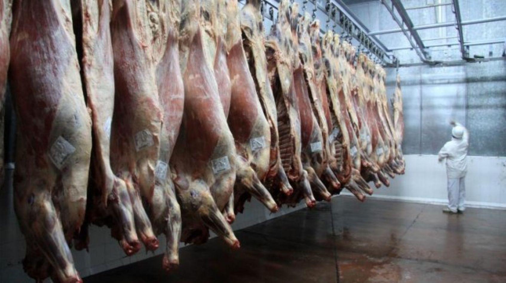 Nuestro país importará carne de wagyu,