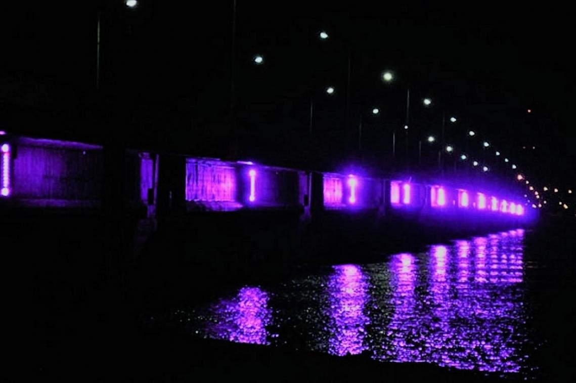 Epilepsia: Piden iluminar de Violeta las dependencias municipales y el Puente Mosconi
