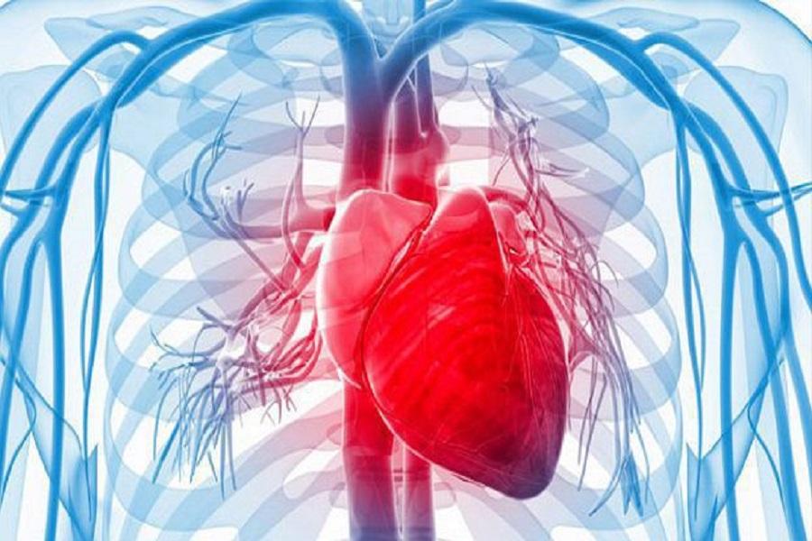 El Hospital Garrahan ya aplica la impresión 3D para cirugías de corazón