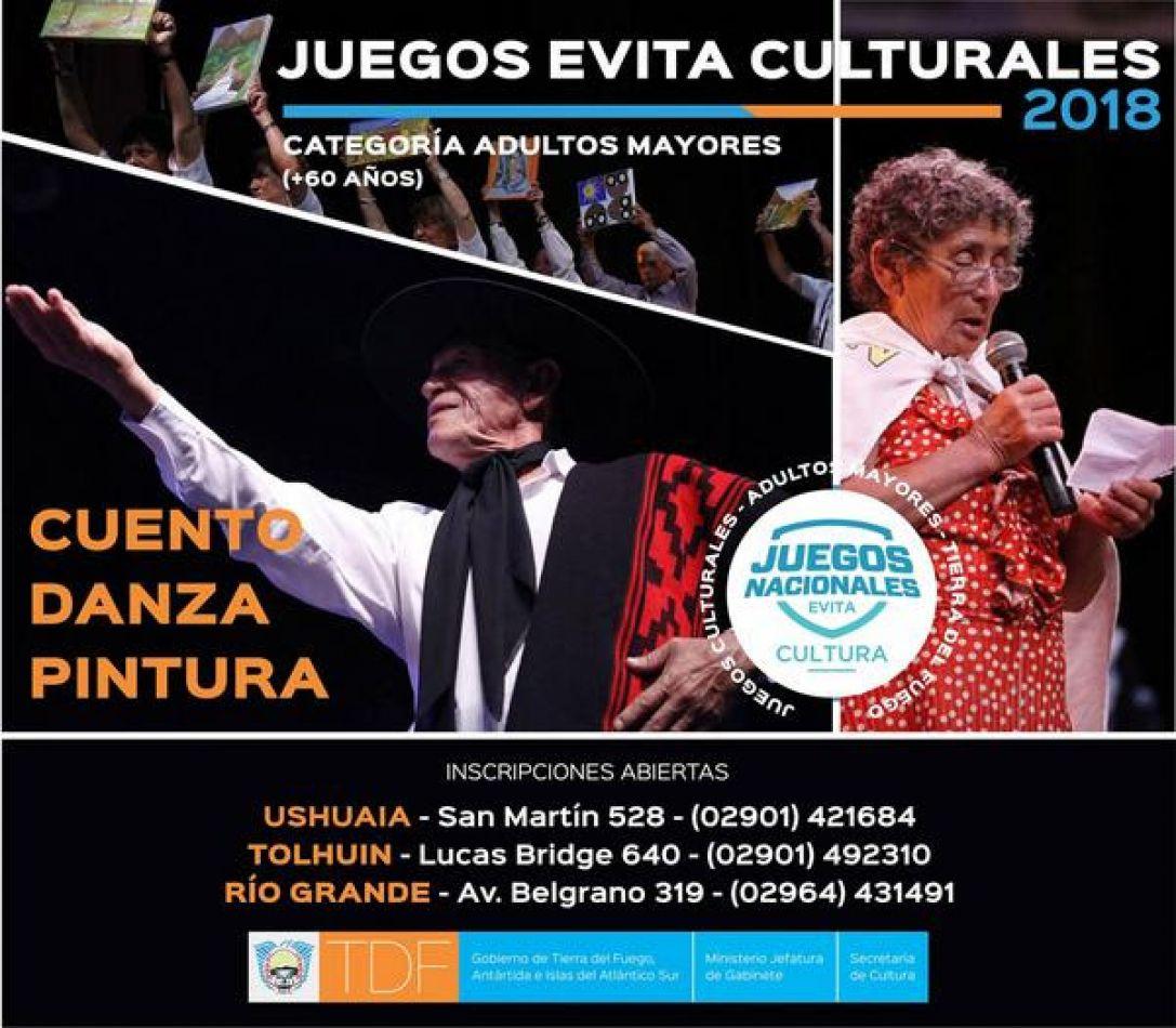 Juegos Culturales Evita 2018