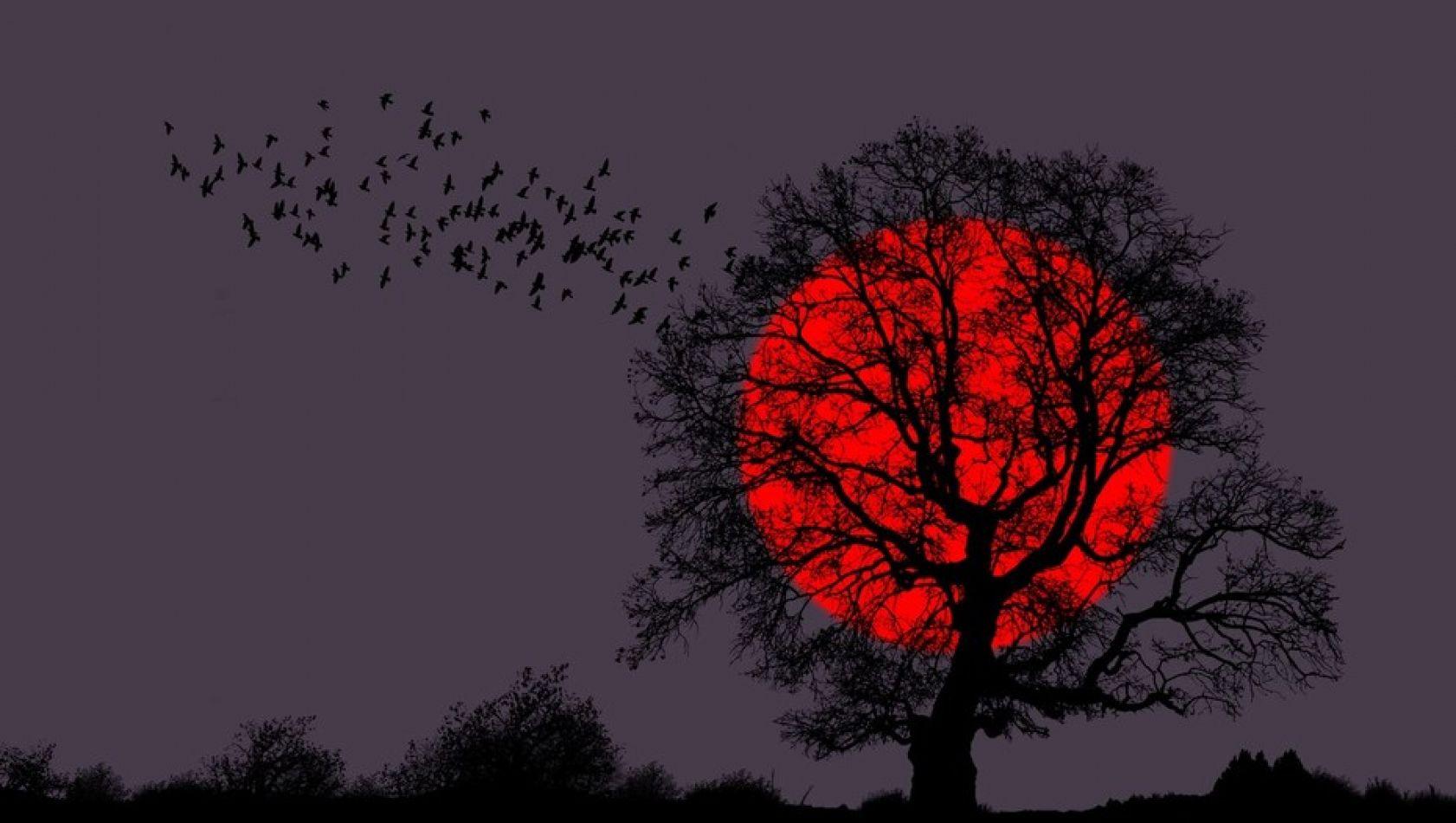 El eclipse lunar del 27 de julio de 2018 será el más largo del siglo XXI