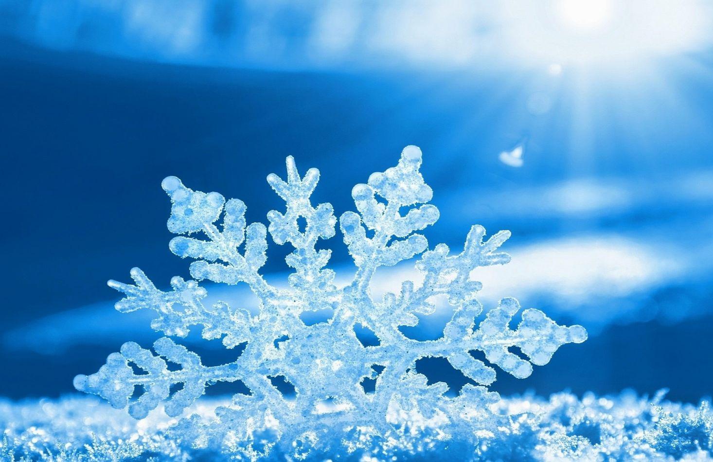 Nieve, suspensión y goce