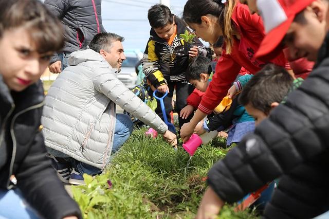 Descuento en impuestos a vecinos que planten árboles en los frentes de sus viviendas