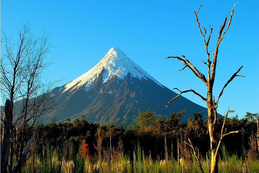 Alerta en el sur de Neuquén por actividad en el Volcán Osorno