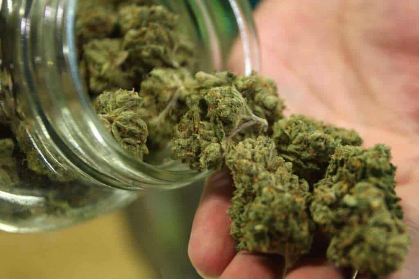 Legisladores buscan normativa propia sobre cannabis medicinal