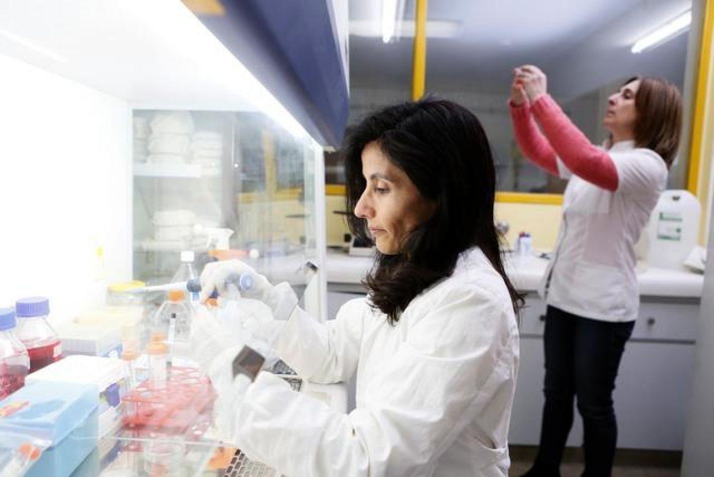 Científicos de La Plata descubren beneficios de la curcumina para tratar el cáncer