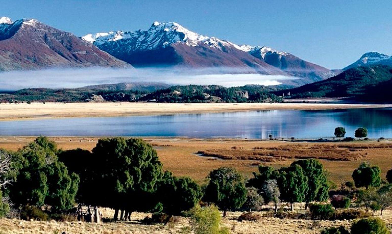 Alerta por el impacto del cambio climático en los bosques patagónicos