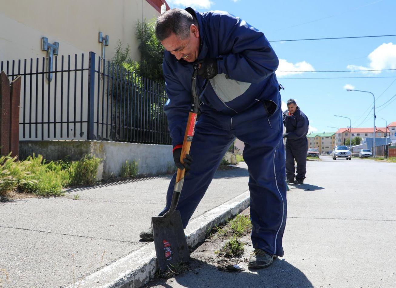 Continúan los trabajos de limpieza y embellecimiento en la ciudad