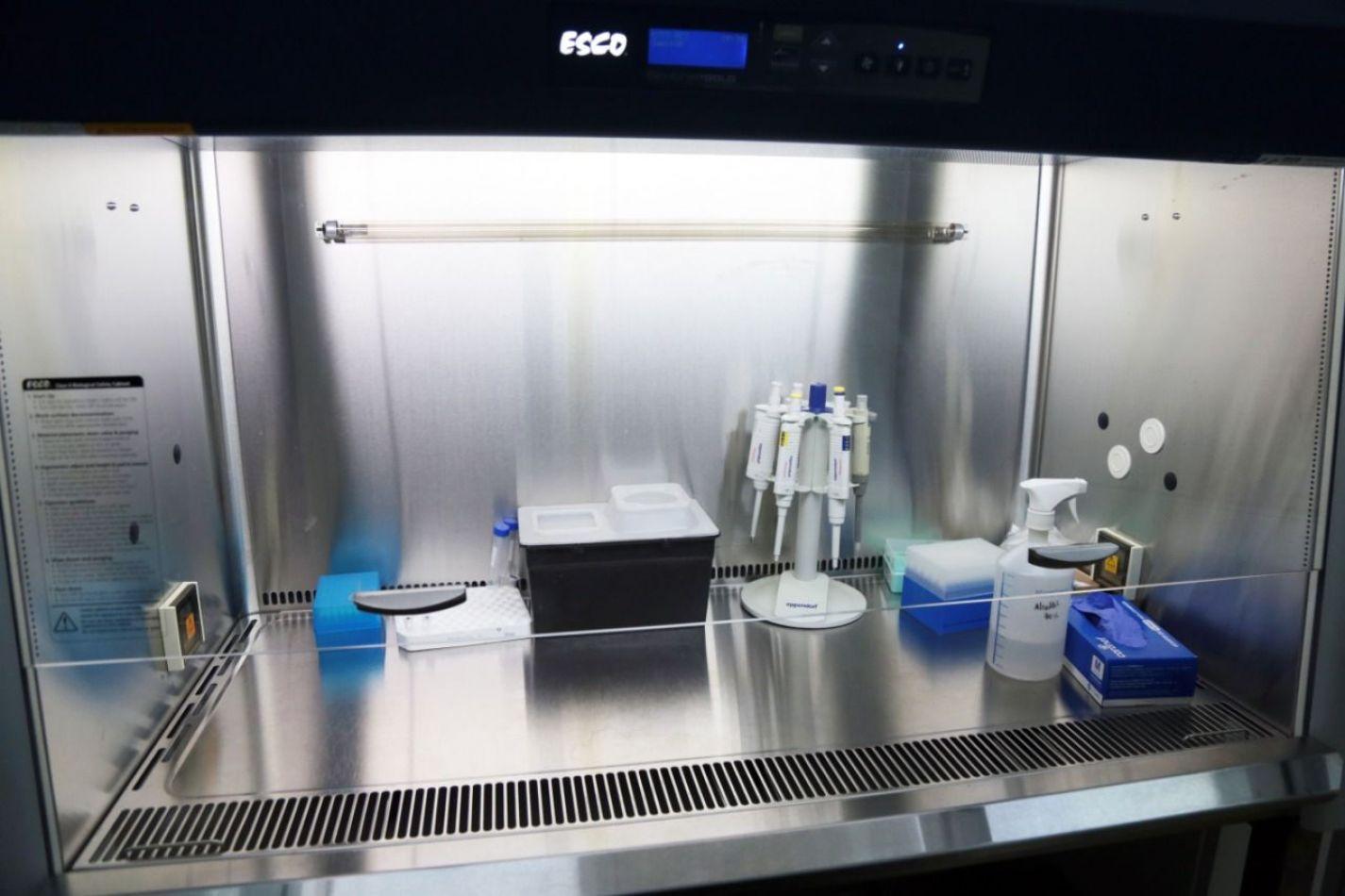 El equipo de Virología y Laboratorio del Hospital Regional Ushuaia inició el procesamiento de muestras el pasado viernes.