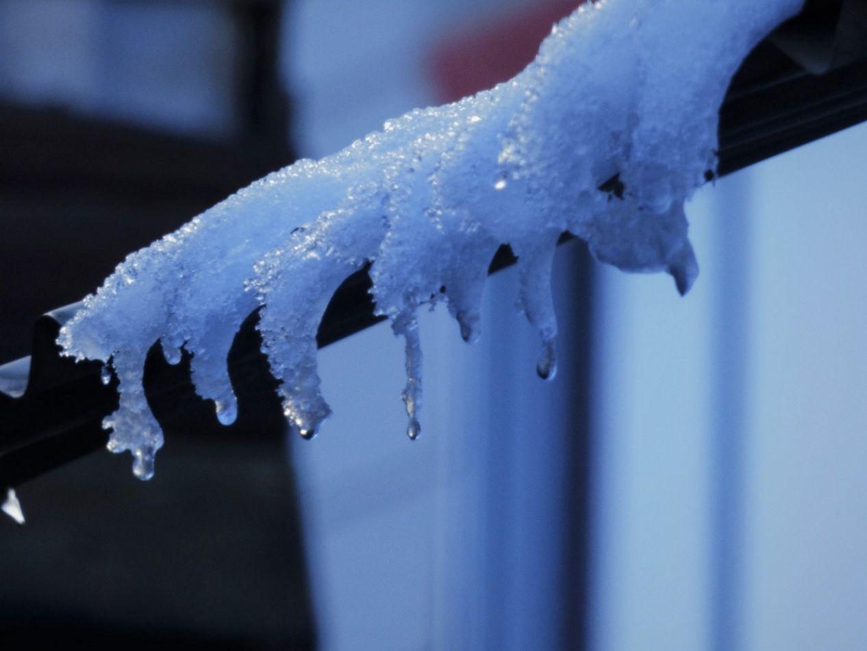 El frío causa estragos en Tierra del Fuego. (Foto: Gentileza Roxana Azúa)