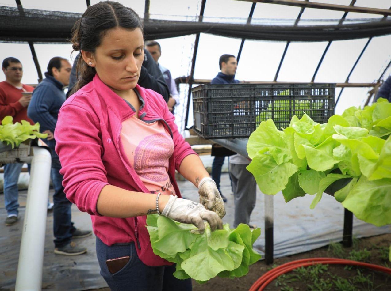 """Se prorroga la inscripción para ser parte de """"RGA Agro Productiva"""