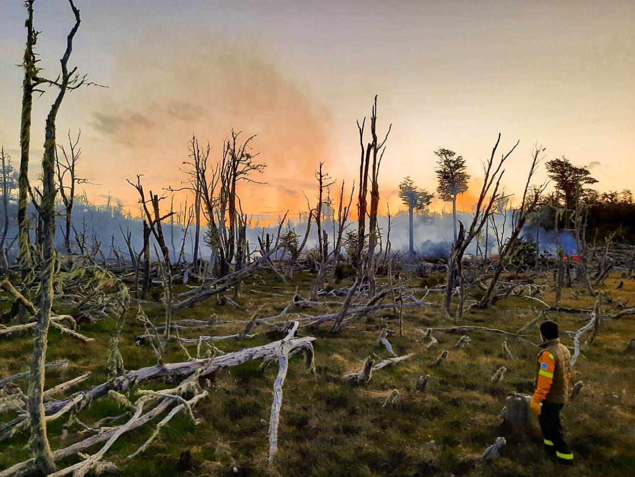 Unidad Provincial de Manejo del Fuego trabajó en la extinción de un incendio forestal en una turbera