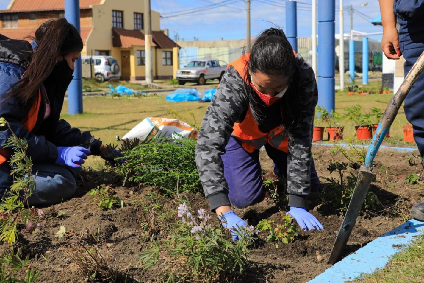 Continúan los trabajos de mantenimiento de espacios verdes