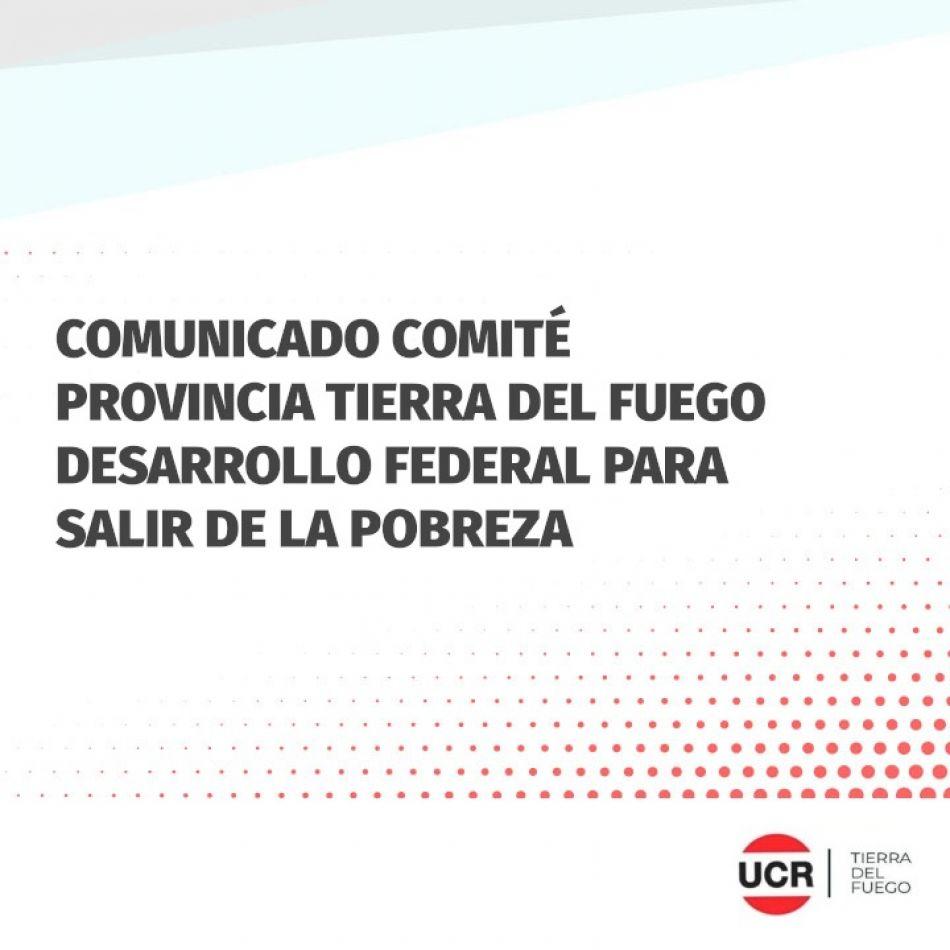 La UCR emitió un comunicado dirigido al ministro de Industria Matías Kulflas