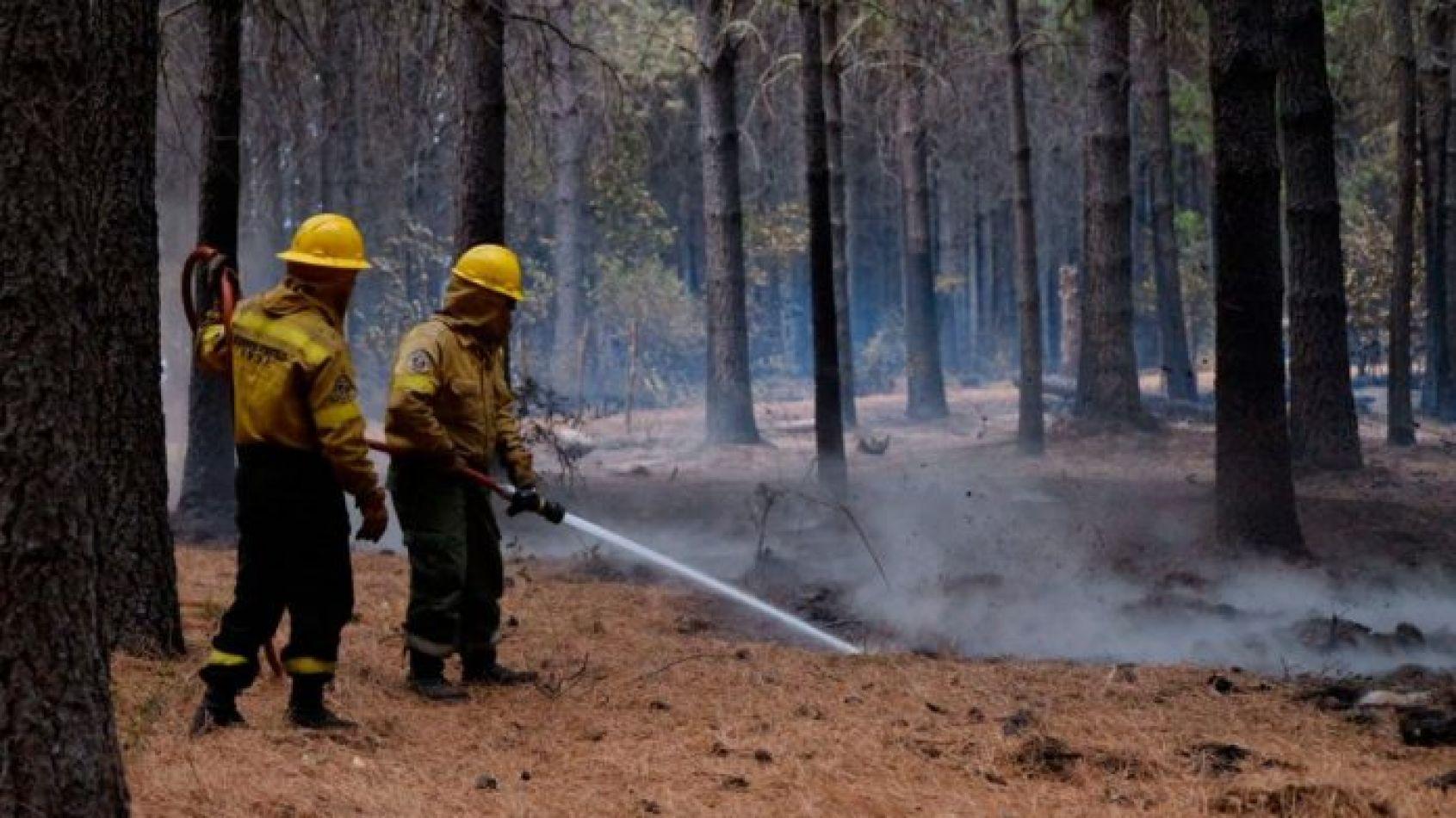 $3 millones de recompensa para encontrar a los responsables de los incendios en Chubut