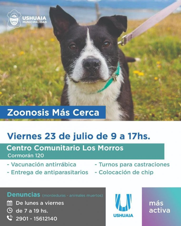 Zoonosis más Cerca estará en el Centro Comunitario Municipal del B° Los Morros