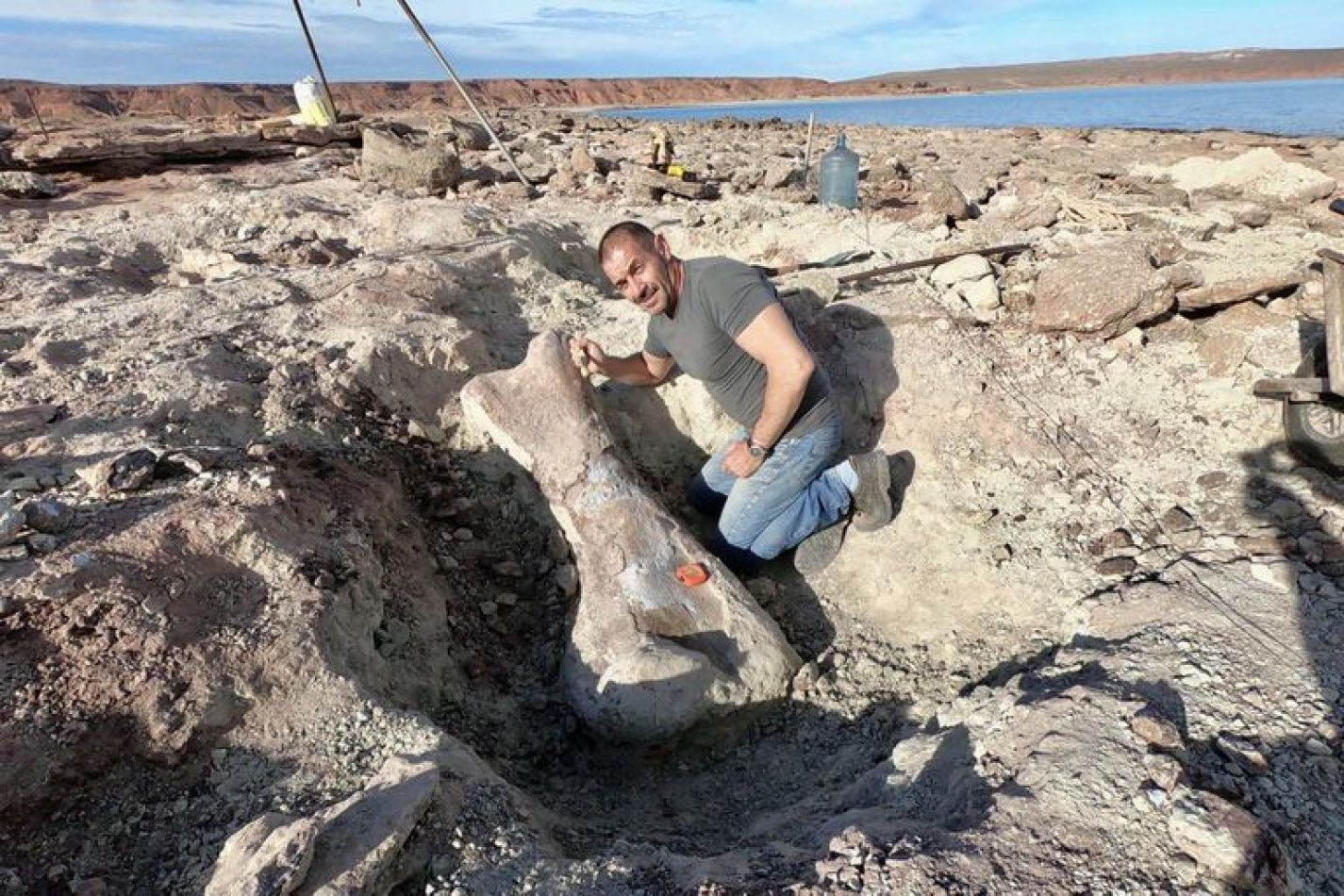 Encontraron los restos de un dinosaurio gigante en Neuquén tras la bajante de un lago