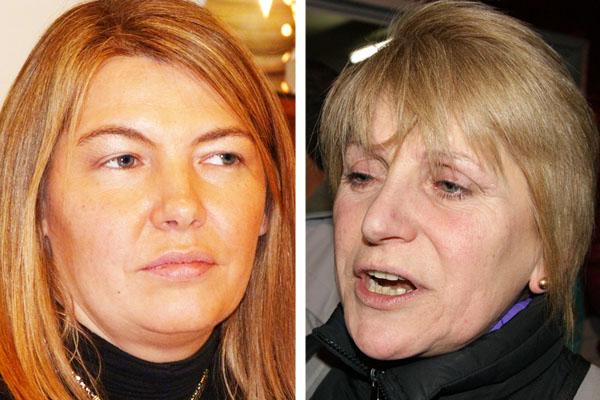 Bertone y Belous, Vocales de la Comisión de Energía de la Cámara de Diputados.