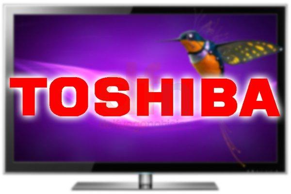 Toshiba busca fabricar en el polo industrial fueguino.
